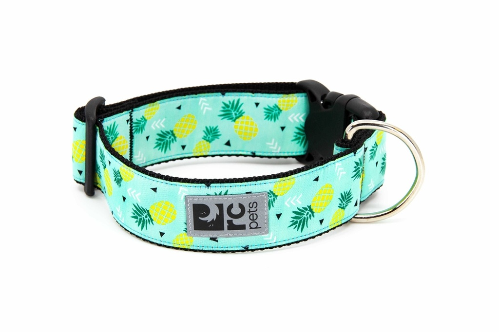 RC Pets Wide Clip Collar (Pineapple Parade)
