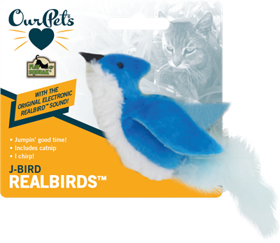 Play N Squeak Jay Bird Cat Toy